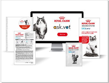 Prize: Royal Canin® Hematuria Detection technology by Blücare®
